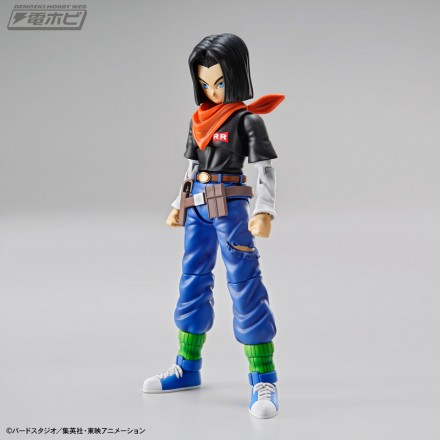 fgs_android17[1]