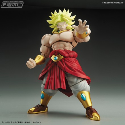 frs_broly_01m[1]